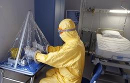 Nhật Bản đẩy mạnh sản xuất thuốc điều trị Ebola