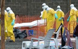 Tình hình bà con người Việt nơi tâm dịch Ebola tại Tây Phi