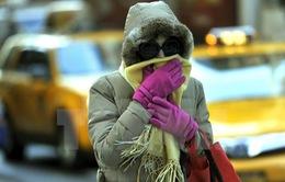 Delhi (Ấn Độ) trải qua đợt giá lạnh lịch sử
