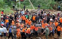 Tìm thấy thi thể 46 nạn nhân trong vụ sạt lở đất ở Indonesia