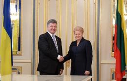 Ukraine sẽ trưng cầu dân ý về gia nhập NATO
