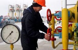 Nga và Ukraine thỏa thuận về điều kiện khí đốt