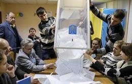 Mỹ và EU hoan nghênh cuộc bầu cử Quốc hội Ukraine