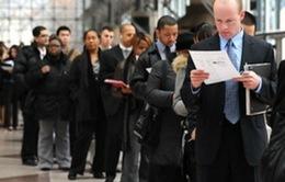 Mỹ: Tăng trưởng việc làm cao nhất trong 3 năm qua