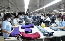 80% hàng công nghiệp nhẹ và tiêu dùng Việt Nam xuất khẩu sang Nga