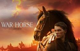 Phim đặc sắc trên HBO ngày 22/12: War Horse