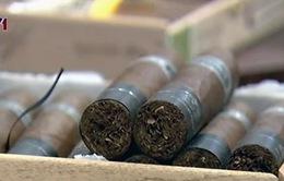 Mỹ dỡ bỏ lệnh cấm vận, tín đồ nghiện xì gà Cuba hân hoan