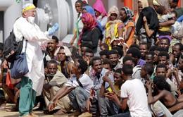 Italy cứu hộ 1.800 người di cư trên biển