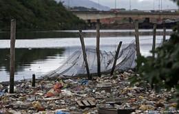 Trước thềm Olympic 2016, nguồn nước tại Brazil ô nhiễm trầm trọng