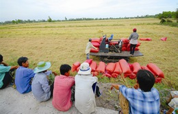 Hơn 90% hợp tác xã nông nghiệp hoạt động không hiệu quả