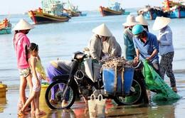 Một lần đi chợ hải sản giá rẻ trên bãi biển Mũi Né