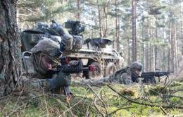 Quân đội Mỹ, Ba Lan tổ chức tập trận bắn đạn thật