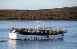 Hai thủy thủ Việt Nam mất tích cùng với tàu cá Đài Loan