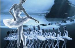 """Trước đêm công diễn, """"cơn sốt"""" vở ballet 3D """"Hồ Thiên Nga"""" chưa hạ nhiệt"""