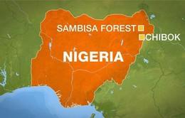 Nigeria: Giải cứu thêm nhiều phụ nữ, trẻ em từ tay Boko Haram