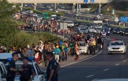 Hungary điều 100 xe buýt chở người di cư tới Áo