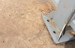 """Ốc vít kênh Nhiêu Lộc - Thị Nghè """"không cánh mà bay"""""""