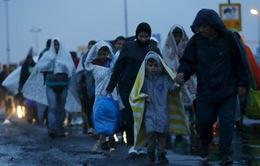 EU hợp tác với Thổ Nhĩ Kỳ hạn chế dòng người di cư