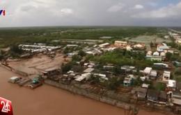 Công trình kè ngầm tạo bãi tại Cà Mau phát huy hiệu quả trước biến đổi khí hậu