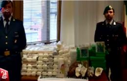 Italy bắt giữ 130kg ma túy tại Venice
