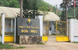 Đề nghị cho công ty vàng Bồng Miêu và Phước Sơn xuất khẩu vàng