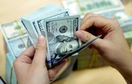 Tăng lãi suất USD, doanh nghiệp nhập khẩu lo lắng