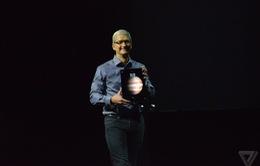 """Cười nghiêng ngả với chùm ảnh """"chế"""" iPad Pro"""