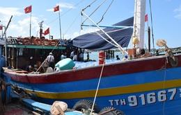 """TT-Huế: """"Con tàu 67"""" đầu tiên vươn khơi, bám biển"""