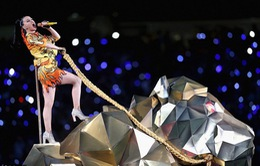 Những hình ảnh ấn tượng tại Super Bowl 2015
