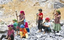 Cảnh báo tình trạng trẻ em bị lừa bóc lột sức lao động