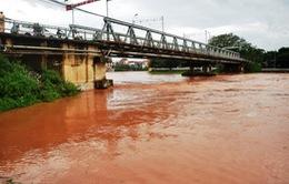 Lạng Sơn: Lũ trên sông Kỳ Cùng đang lên nhanh
