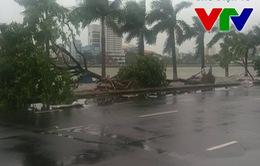 Miền Trung không có thiệt hại lớn sau bão số 3