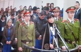 Xét xử vụ tham nhũng tại Agribank chi nhánh Nam Hà Nội