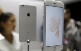 Apple nên loại bỏ khe cắm audio jack trên iPhone 7