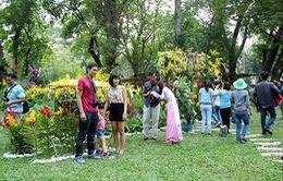 TP.HCM: Miễn phí cho trẻ em dưới 12 tuổi vào Hội hoa xuân