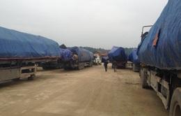 Hà Tĩnh: Phạt gần 400 triệu đồng đoàn xe chở gỗ quá tải