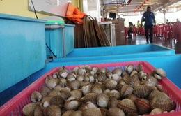 Giá hải sản Mỹ giảm mạnh do sản phẩm nhập khẩu