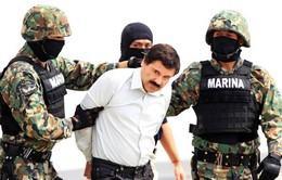 Mexico: Trùm ma túy nguy hiểm nhất thế giới vượt ngục thành công lần thứ 2