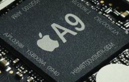 Chip A9 lộ diện trước ngày ra mắt iPhone 6S