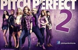 Pitch Perfect phần 2 sắp ra mắt công chúng