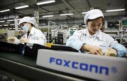 Gia công iPhone 6S, Foxconn thu lời kỷ lục