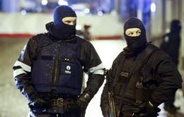 Bỉ phạt tù 30 đối tượng thuộc mạng lưới tuyển quân của tổ chức IS