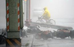 Siêu bão Soudelor đổ bộ vào Đài Loan, ít nhất 4 người chết