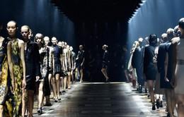 Pháp cấm người mẫu siêu gầy hành nghề