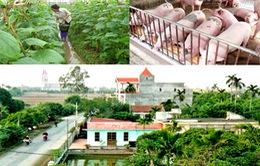 Xã miền núi đầu tiên ở Quảng Trị đạt chuẩn NTM