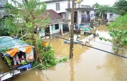 TT-Huế chủ động nguồn hàng dự trữ mùa bão lũ