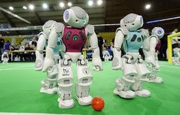 RoboCup 2015: Robot tranh tài đá bóng