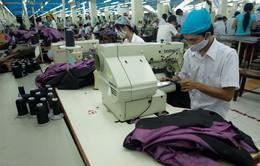 TP.HCM: 65% doanh nghiệp hoạt động trở lại sau Tết
