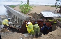 Nhiều bãi biển tại Quảng Nam nguy cơ bị xóa sổ do xâm thực
