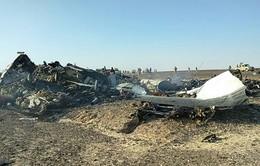 Mỹ: Chưa có 'bằng chứng trực tiếp' khủng bố dính líu vụ máy bay Nga bị rơi